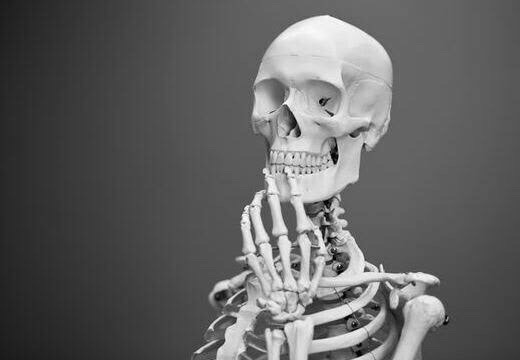 骨粗しょう症とは?